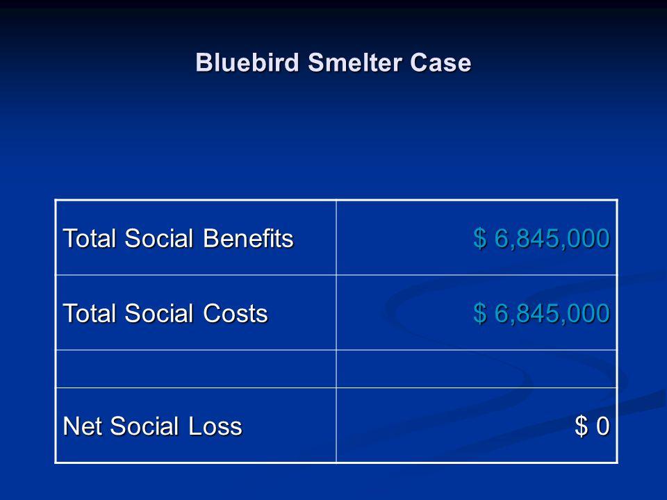 Bluebird Smelter Case Total Social Benefits $ 6,845,000 Total Social Costs Net Social Loss $ 0