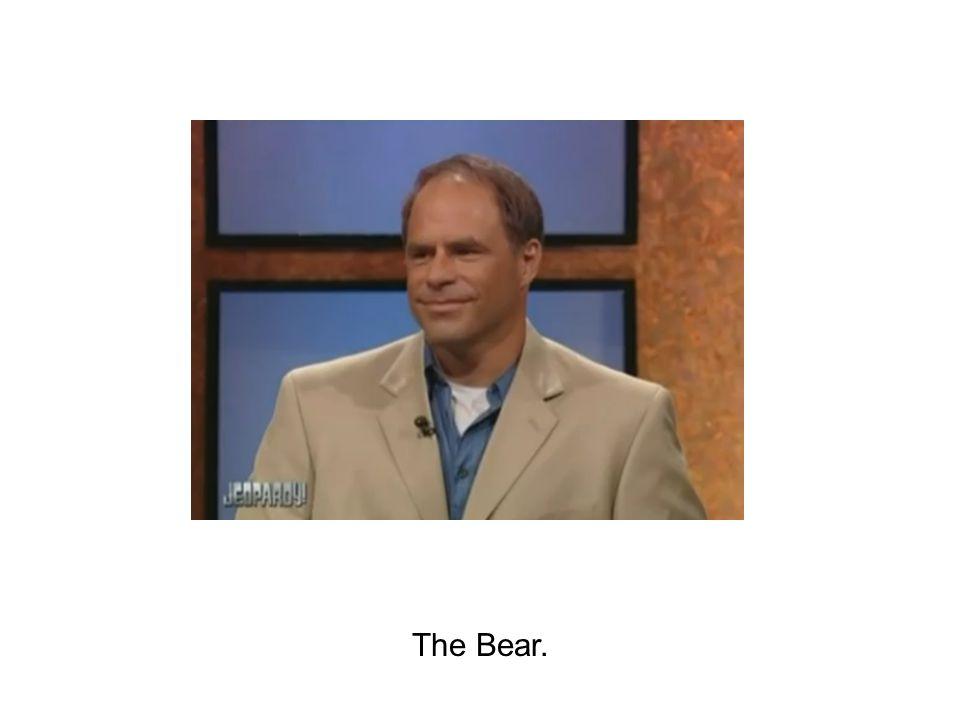 The Bear.