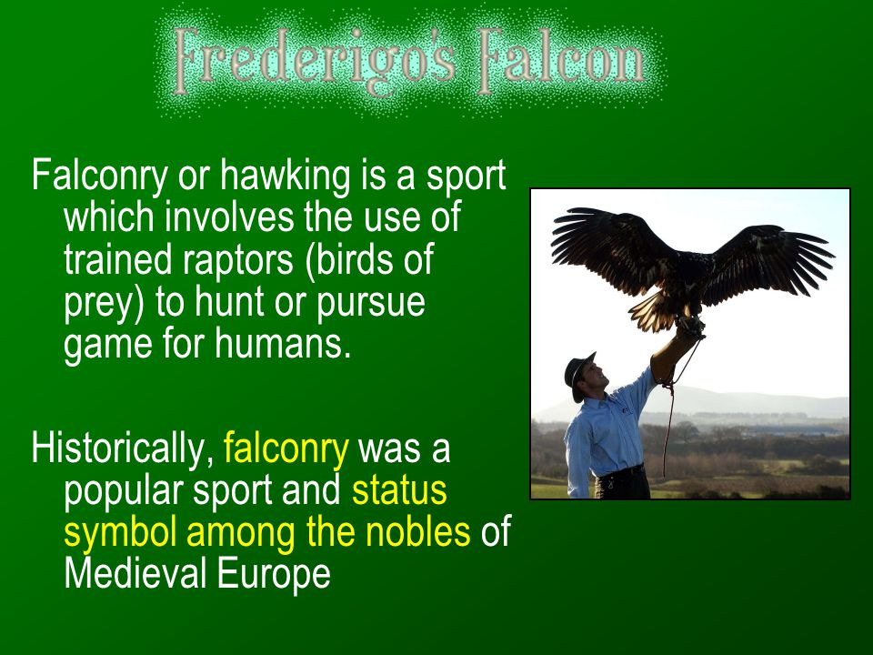 Falconry or hawking is a sport which involves the use of trained raptors (birds of prey) to hunt or pursue game for humans.