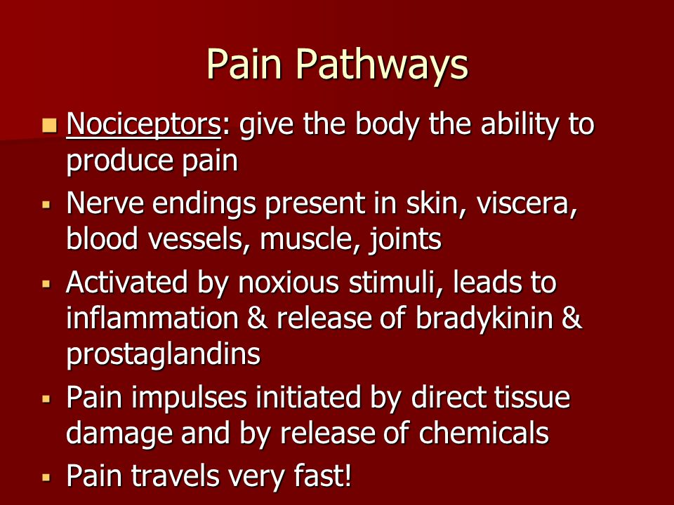 Pain Pathways Nociceptors: give the body the ability to produce pain