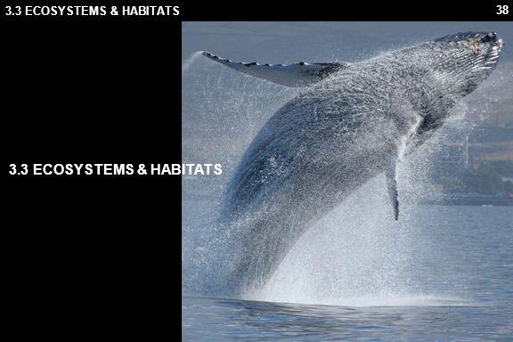 3.3 ECOSYSTEMS & HABITATS 3.3 ECOSYSTEMS & HABITATS