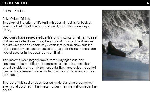 3.1 OCEAN LIFE