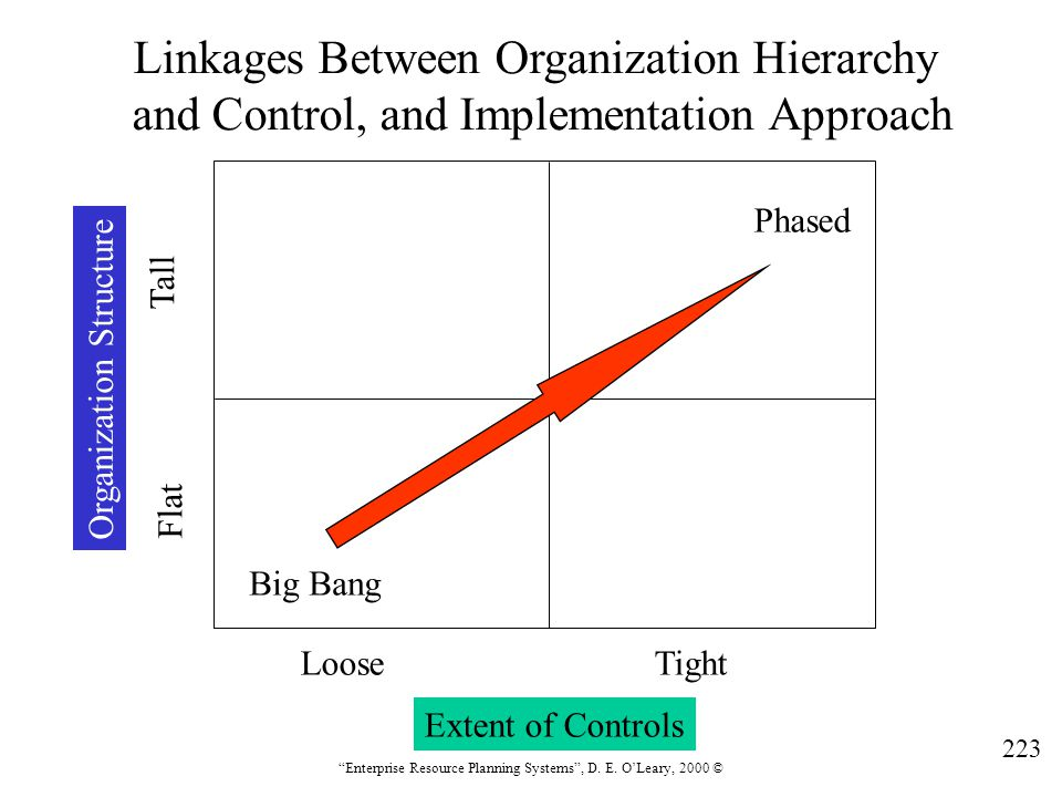 Linkages Between Organization Hierarchy
