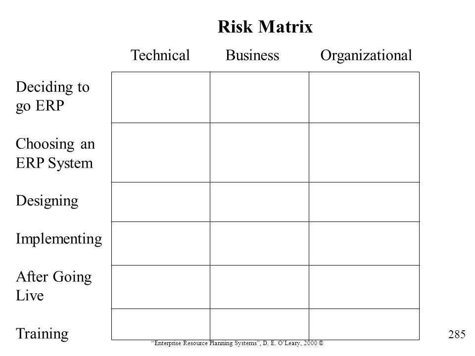 Risk Matrix Technical Business Organizational Deciding to go ERP