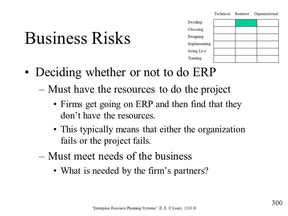 Business Risks Deciding whether or not to do ERP