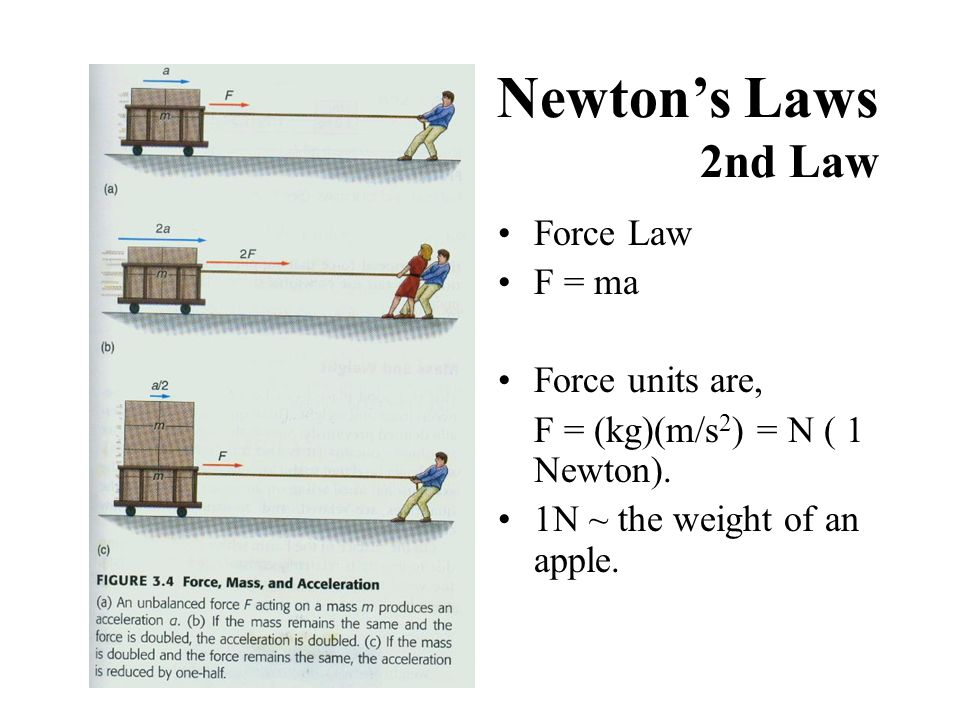 Newton's Laws 2nd Law Force Law F = ma Force units are,