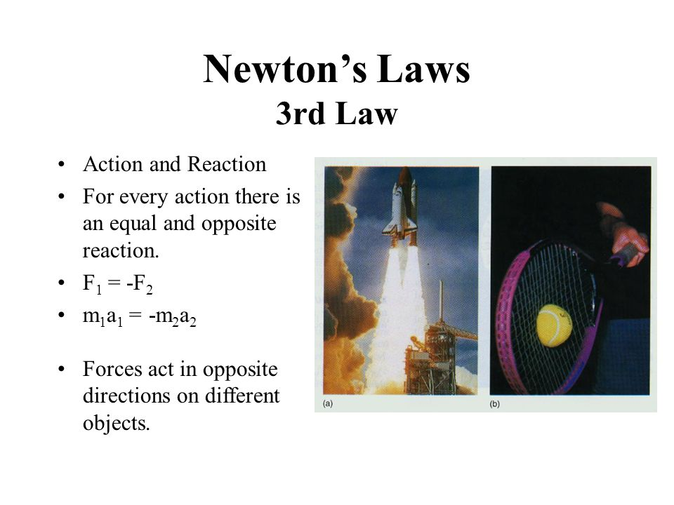 Newton's Laws 3rd Law Action and Reaction
