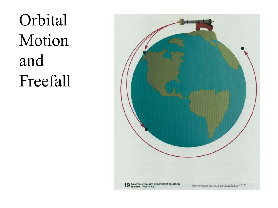 Orbital Motion and Freefall