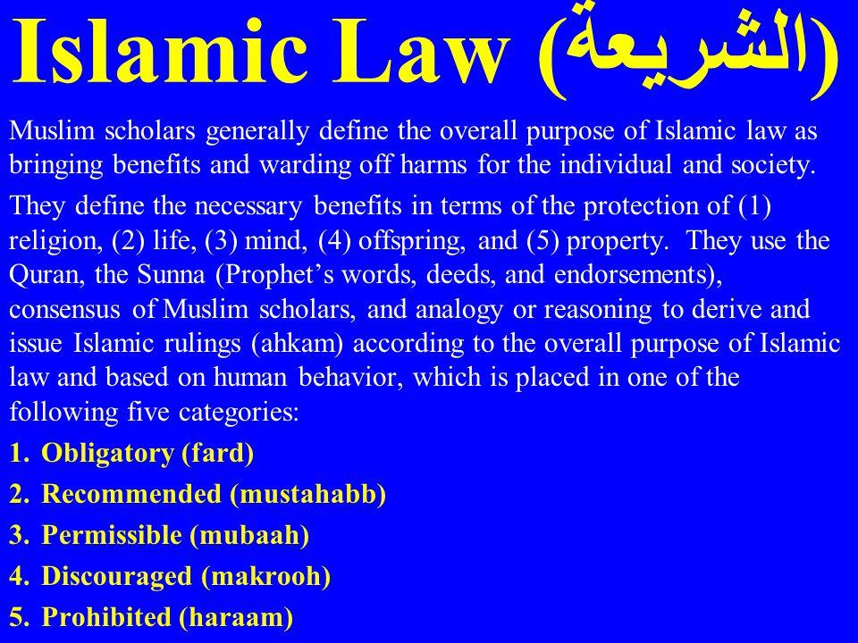 Islamic Law (الشريعة)