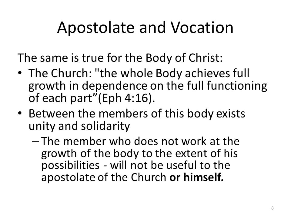 Apostolate and Vocation