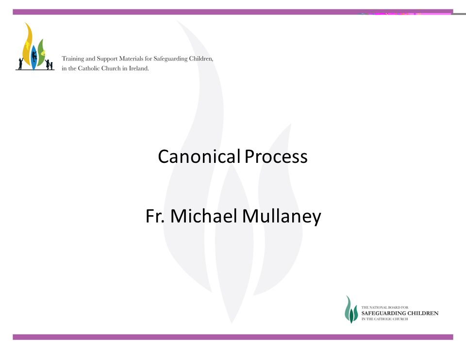 Canonical Process Fr. Michael Mullaney