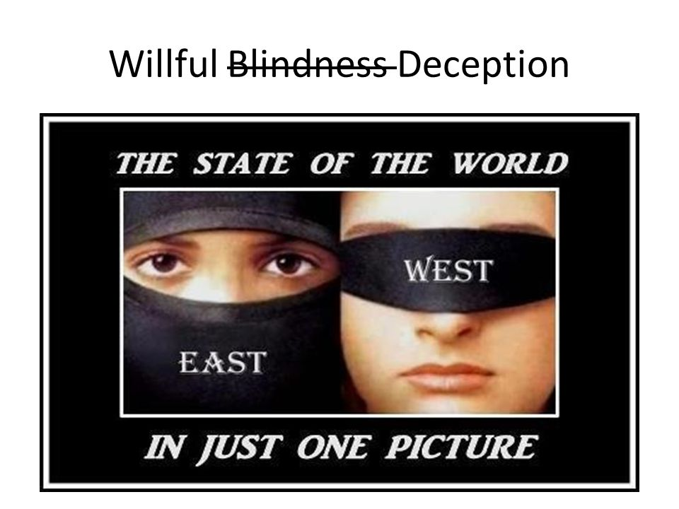 Willful Blindness Deception
