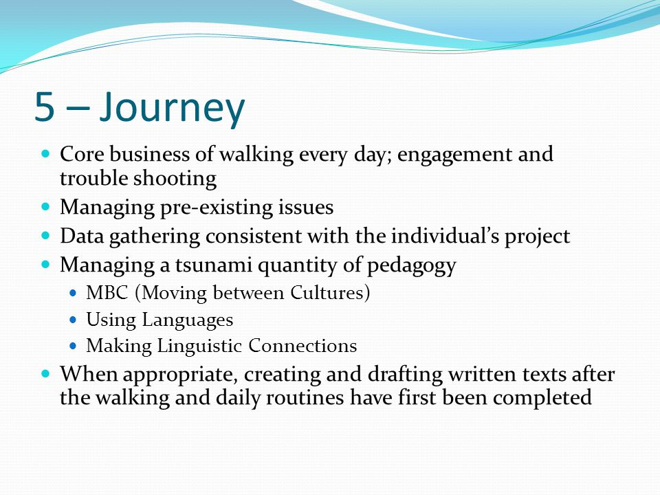 5 – Journey Core business of walking every day; engagement and trouble shooting. Managing pre-existing issues.