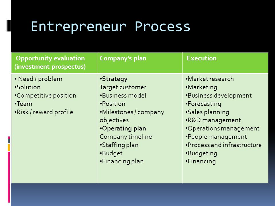 Entrepreneur Process Opportunity evaluation (investment prospectus)