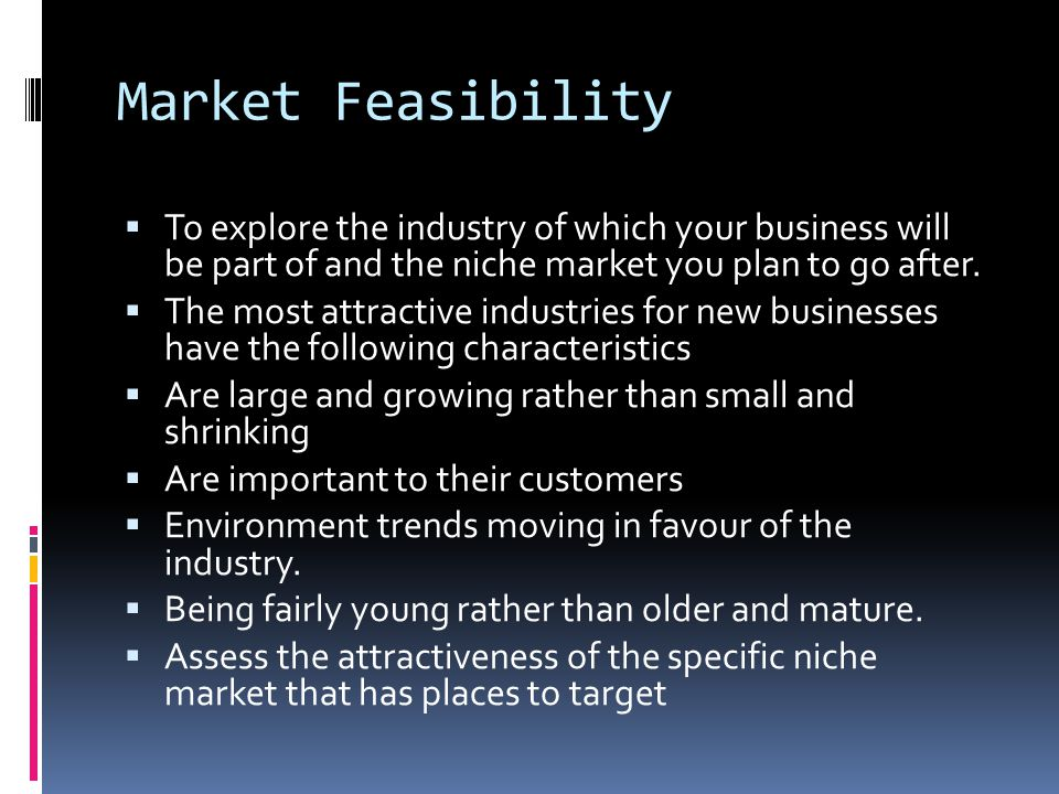 Market Feasibility To explore the industry of which your business will be part of and the niche market you plan to go after.