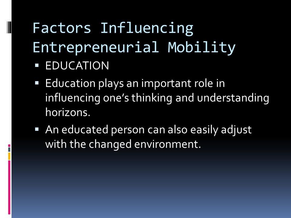 Factors Influencing Entrepreneurial Mobility