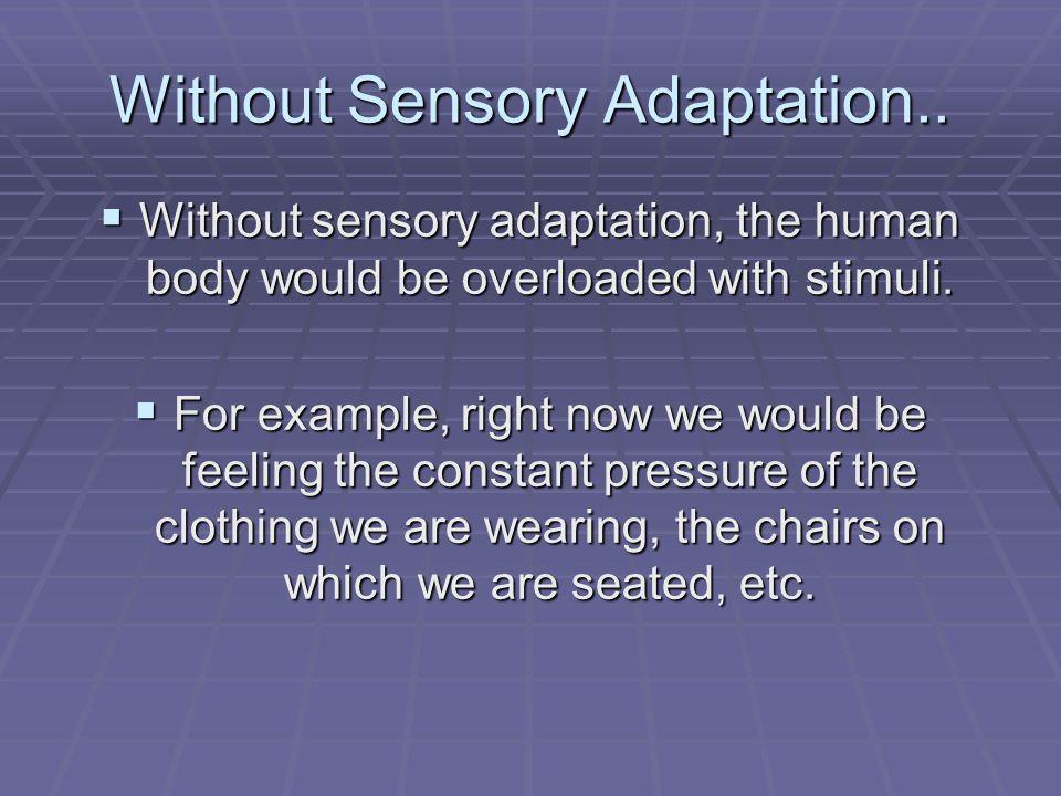 Without Sensory Adaptation..