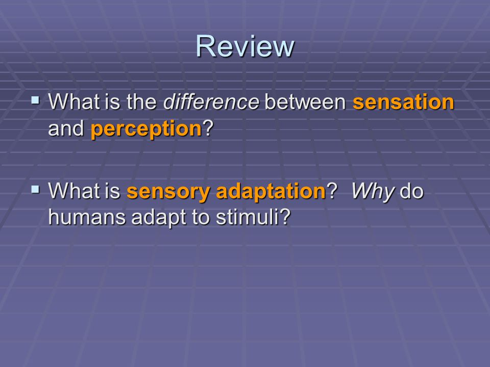 Review What is the difference between sensation and perception