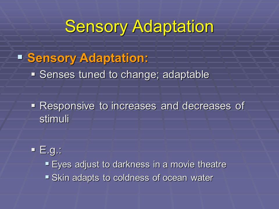 Sensory Adaptation Sensory Adaptation: