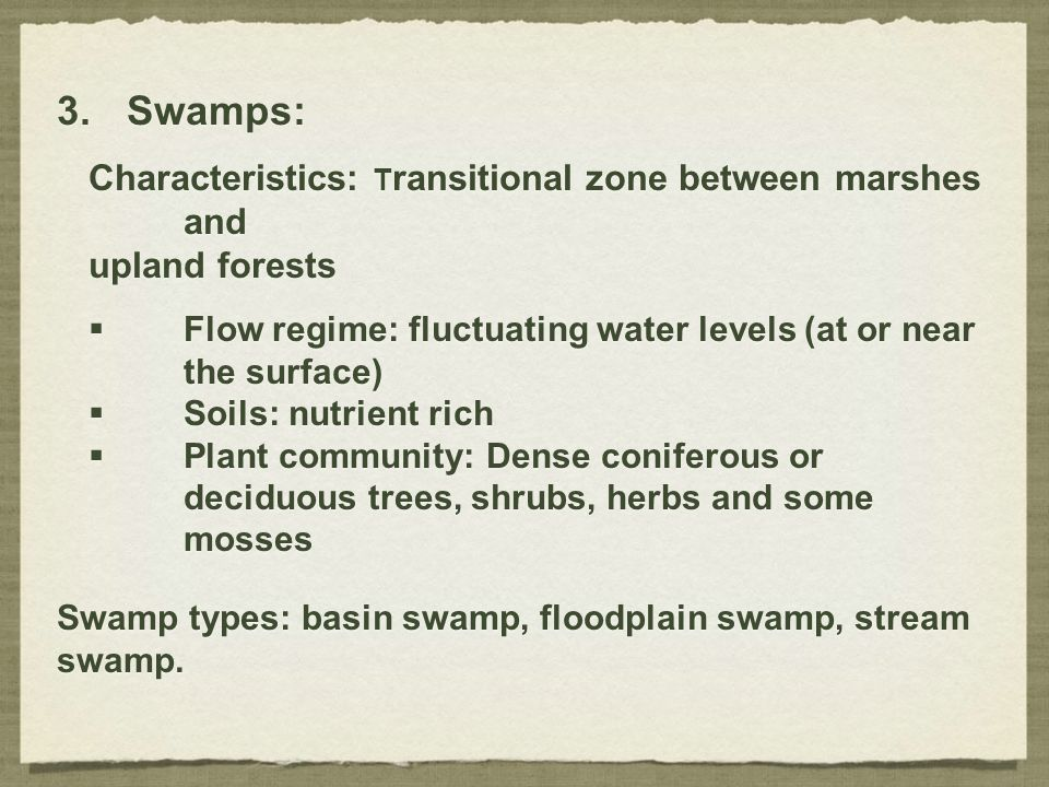 Swamps: Characteristics: Transitional zone between marshes and