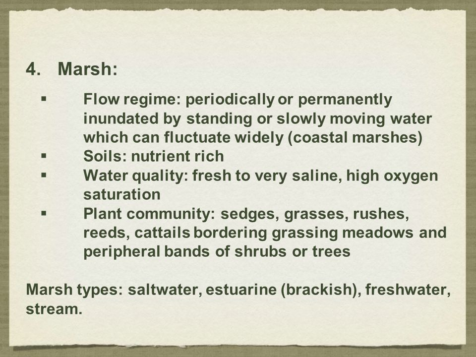 Marsh: Flow regime: periodically or permanently inundated by standing or slowly moving water which can fluctuate widely (coastal marshes)