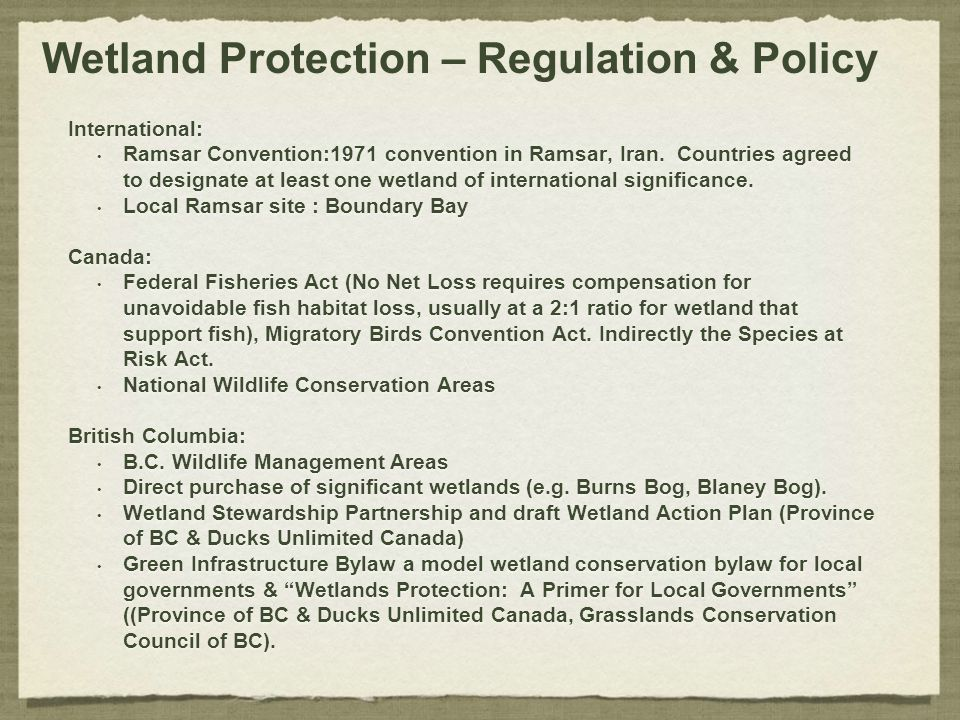 Wetland Protection – Regulation & Policy