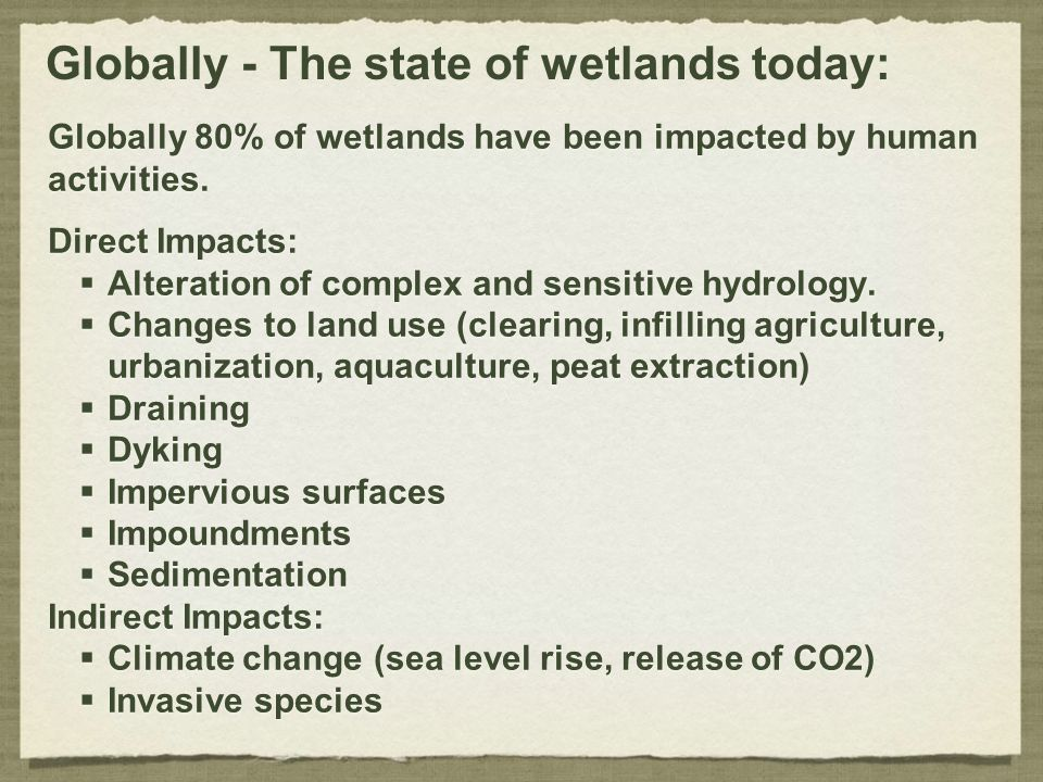 Globally - The state of wetlands today: