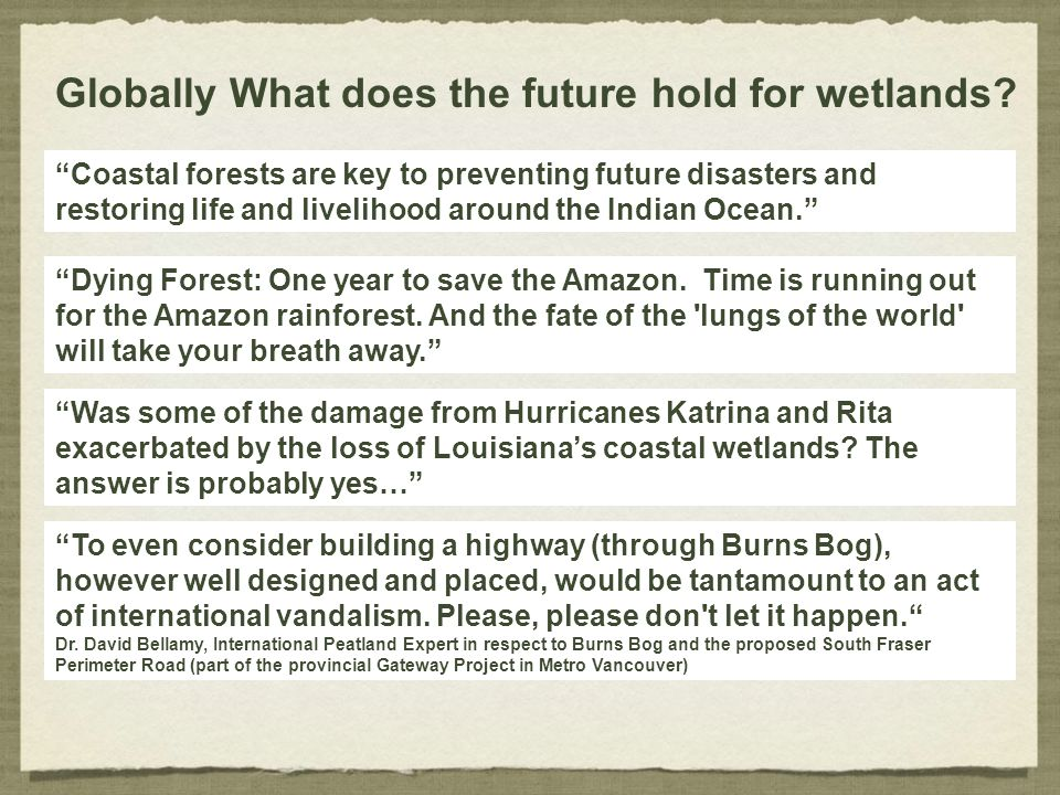 Globally What does the future hold for wetlands