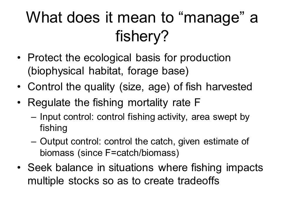 What does it mean to manage a fishery
