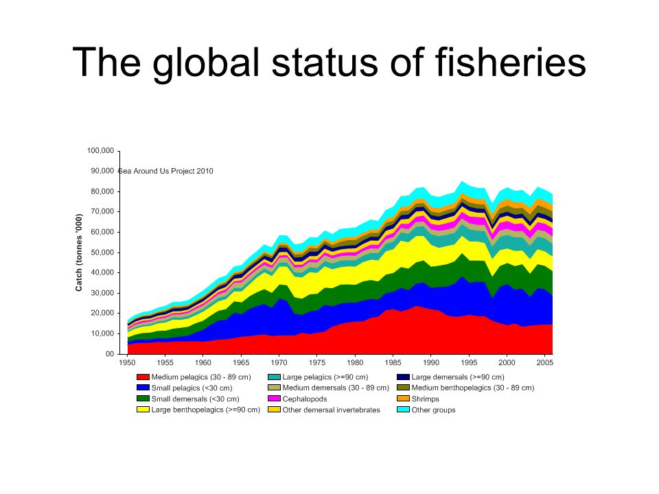 The global status of fisheries