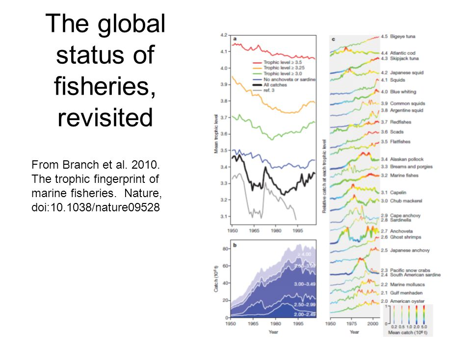 The global status of fisheries, revisited