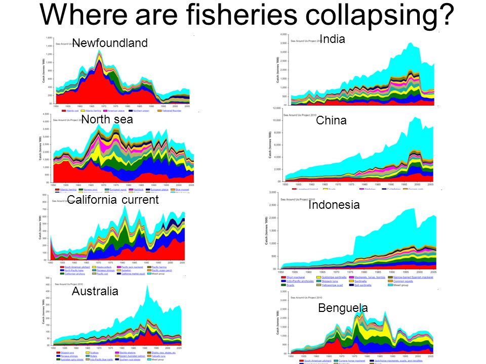 Where are fisheries collapsing