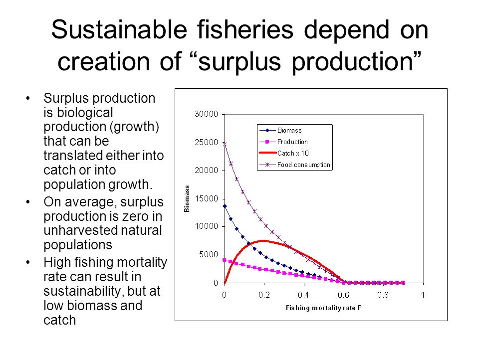Sustainable fisheries depend on creation of surplus production