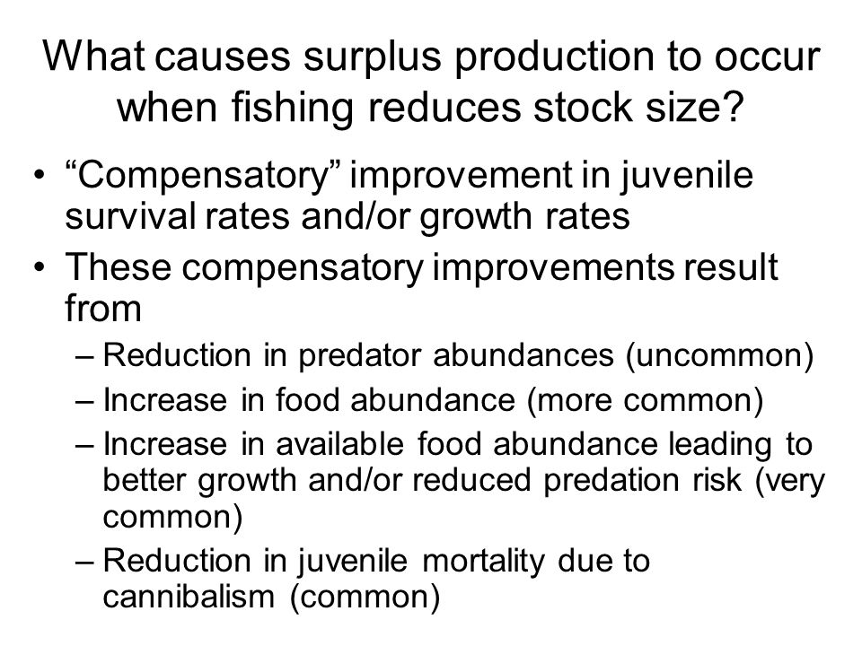 What causes surplus production to occur when fishing reduces stock size