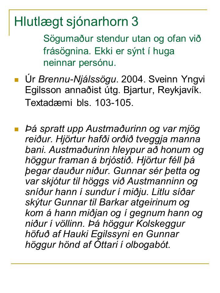 Hlutlægt sjónarhorn 3. Sögumaður stendur utan og ofan við. frásögnina