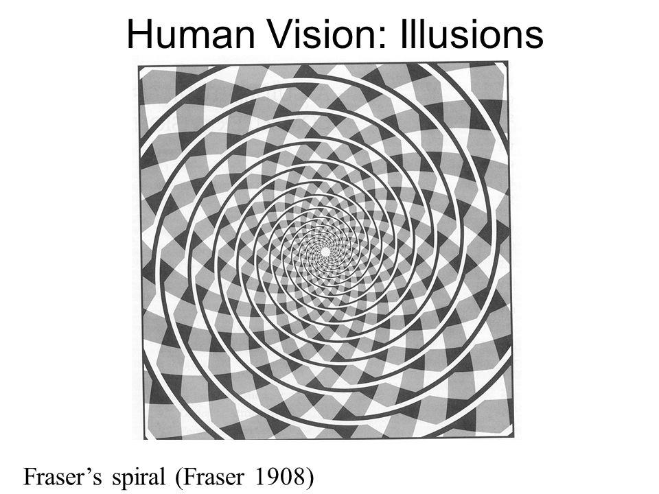 Human Vision: Illusions