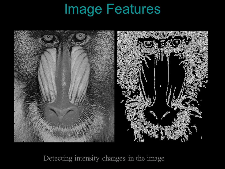 Image Features Detecting intensity changes in the image