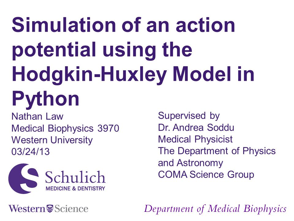 Simulation of an action potential using the Hodgkin-Huxley Model in Python
