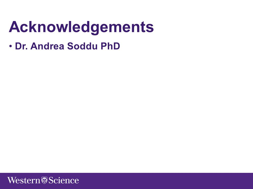 Acknowledgements Dr. Andrea Soddu PhD