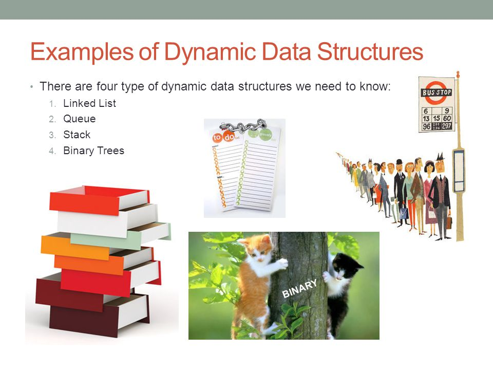 Examples of Dynamic Data Structures