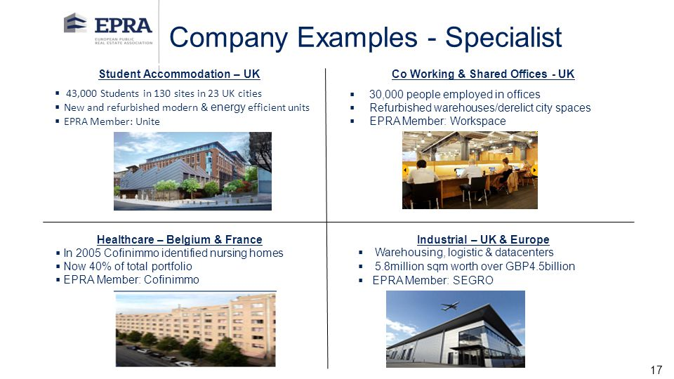 Company Examples - Specialist