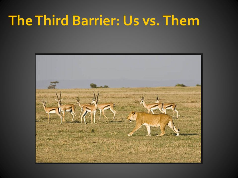 The Third Barrier: Us vs. Them