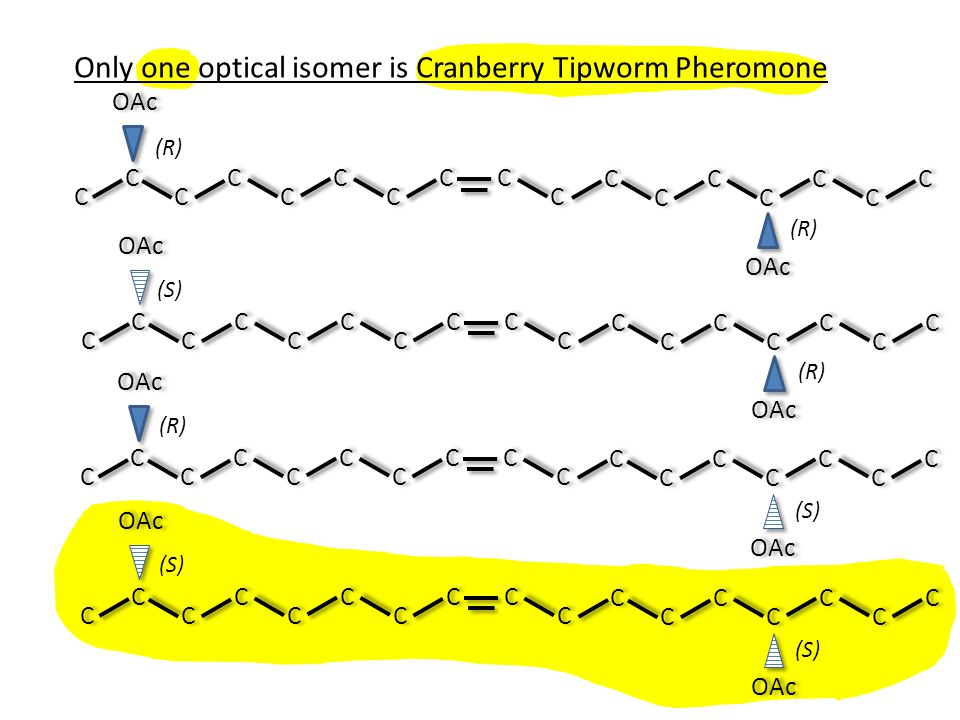 Only one optical isomer is Cranberry Tipworm Pheromone