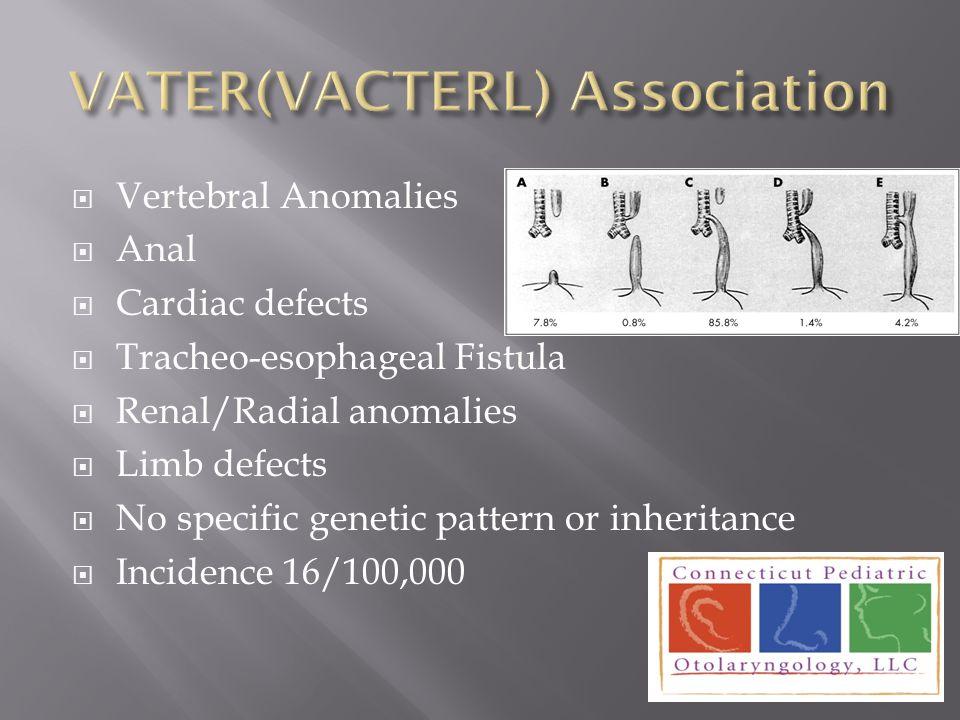 VATER(VACTERL) Association