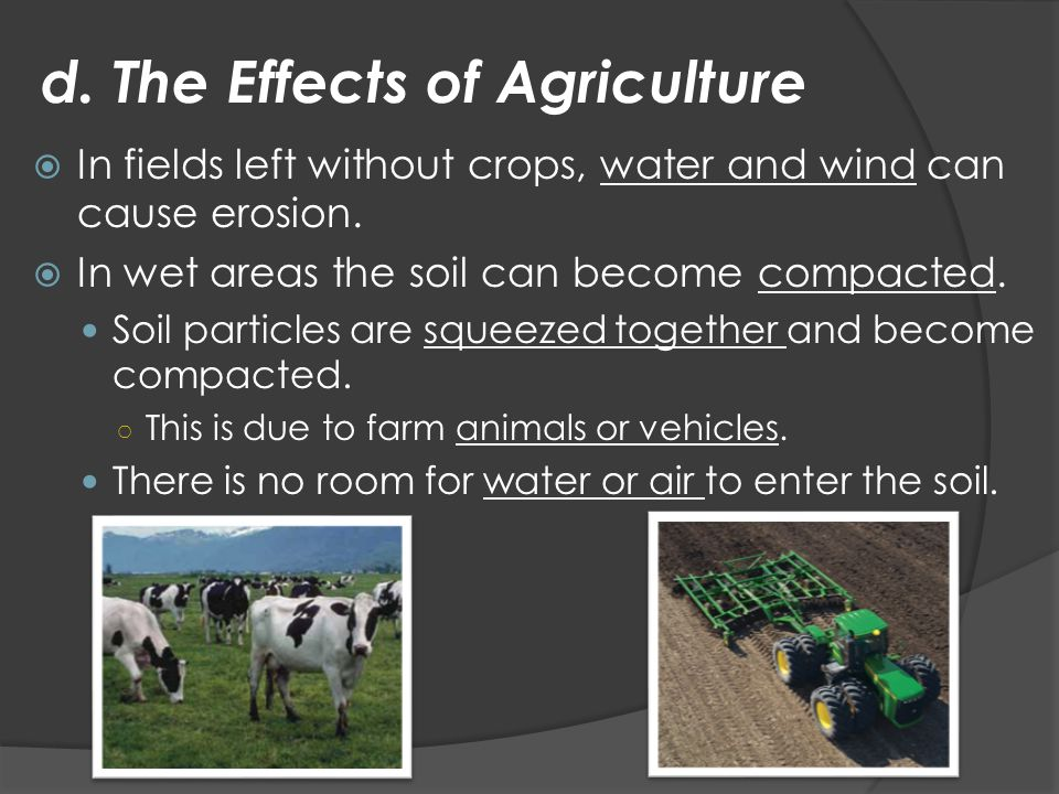 d. The Effects of Agriculture