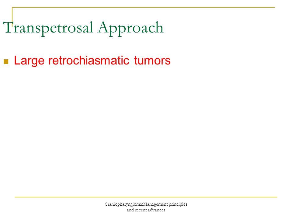 Transpetrosal Approach