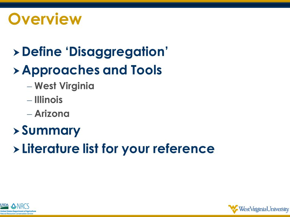 Overview Define 'Disaggregation' Approaches and Tools Summary