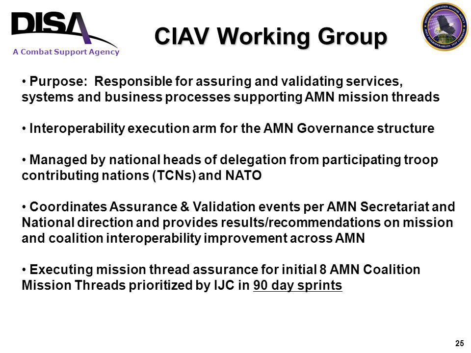 CIAV Working Group Purpose: Responsible for assuring and validating services, systems and business processes supporting AMN mission threads.