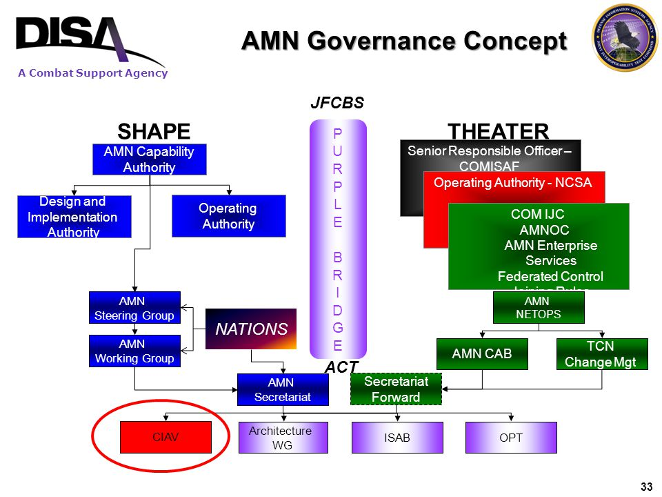 AMN Governance Concept