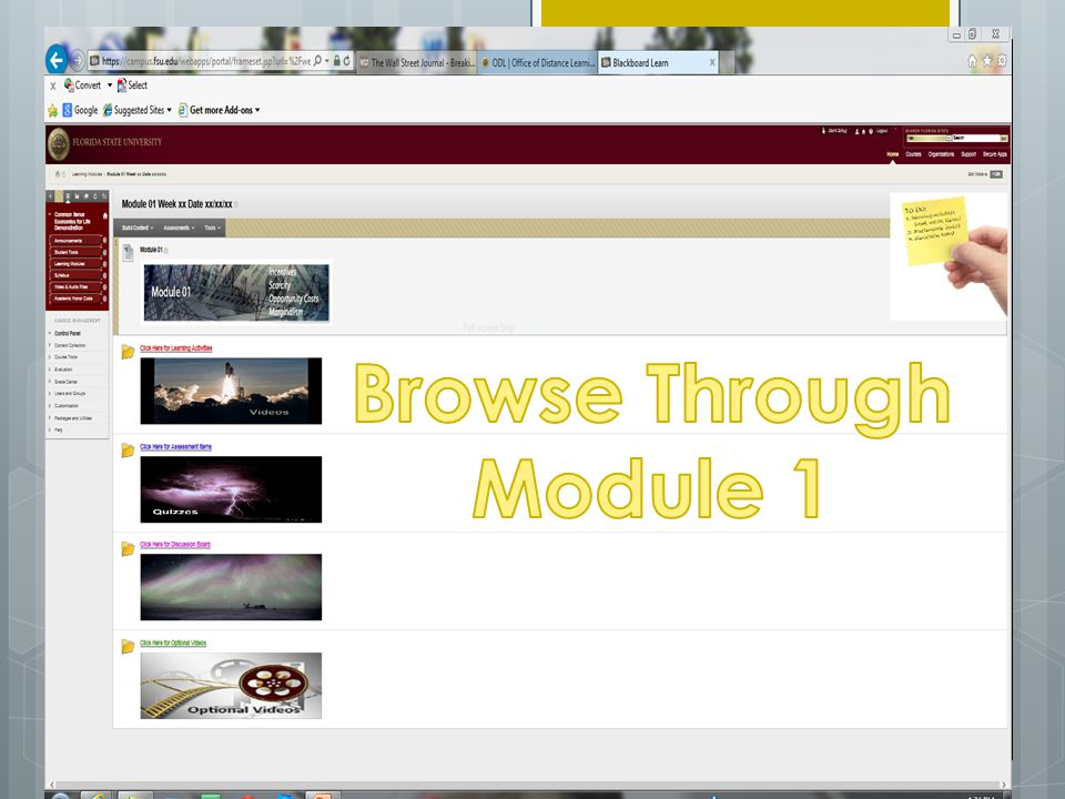 Browse Through Module 1 Send participants to Demo Site; let them look around, take quiz, review discussion board questions.